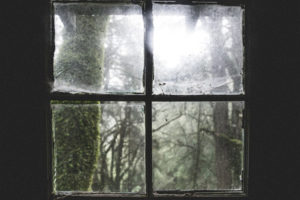 Photo of a foggy window